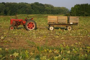 Hadley Farm and Tractor 30BK8432 small